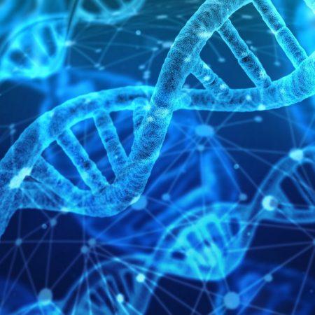 Генетические факторы повышенного риска сердечно-сосудистых заболеваний и болезни Альцгеймера